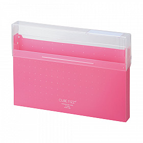 LIHIT LAB Cube Fizz Top Opening Storage Case - A4 - Pink